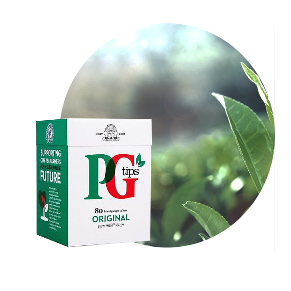 Jasa Internacional. PG Tips